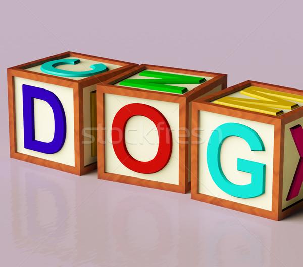 дети блоки правописание собака символ собаки Сток-фото © stuartmiles