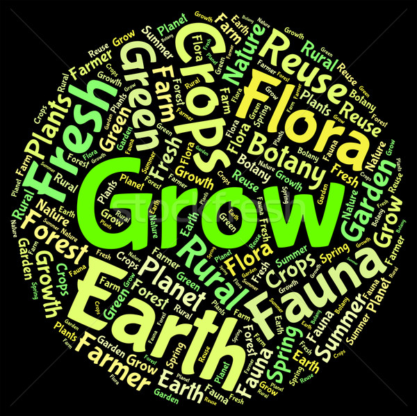 Grow Words Represents Cultivates Growth And Cultivation Stock photo © stuartmiles