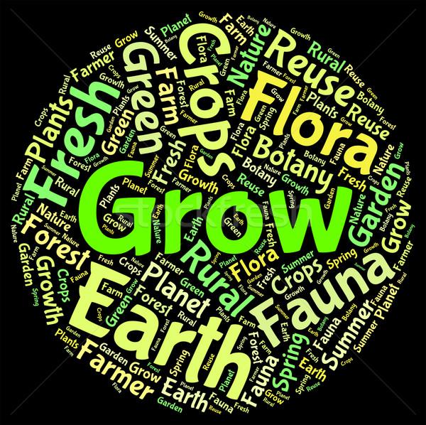 расти слов роста слово смысл Сток-фото © stuartmiles