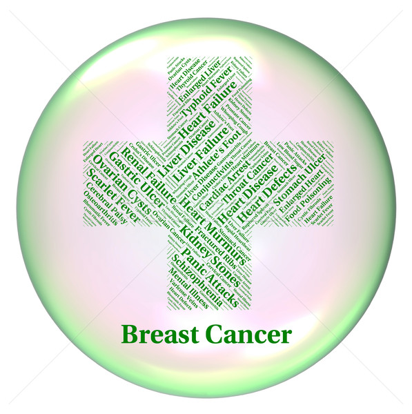 Breast Cancer Represents Mammary Gland And Ailments Stock photo © stuartmiles