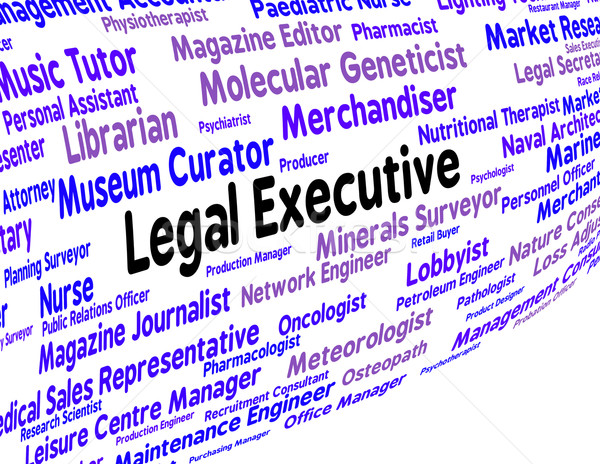 Legal Executive Means Managing Director And Attorney Stock photo © stuartmiles