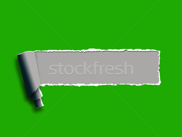 Torn Paper Background Shows Blank Copyspace Ripped Note Stock photo © stuartmiles