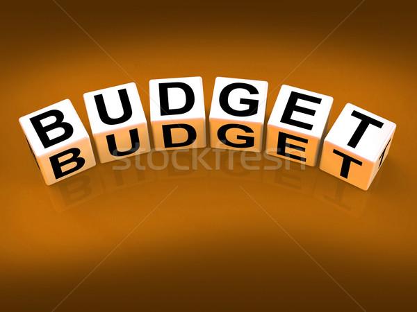 Budgétaire blocs montrent planification financière comptables Photo stock © stuartmiles
