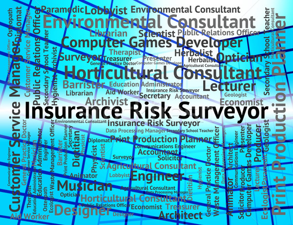 Insurance Risk Surveyor Indicates Position Policies And Surveyin Stock photo © stuartmiles