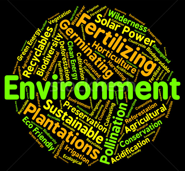 Environment Word Means Eco Systems And Ecosystem Stock photo © stuartmiles