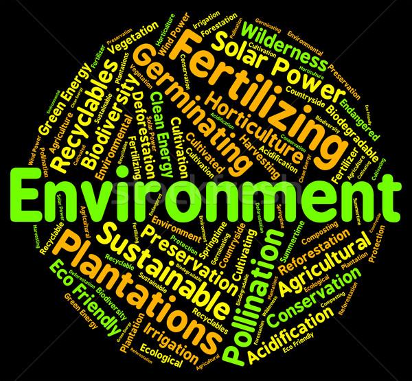 Környezet szó öko ökoszisztéma mutat Stock fotó © stuartmiles