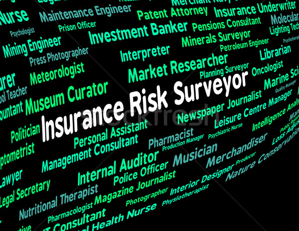 Insurance Risk Surveyor Indicates Unsafe Work And Word Stock photo © stuartmiles
