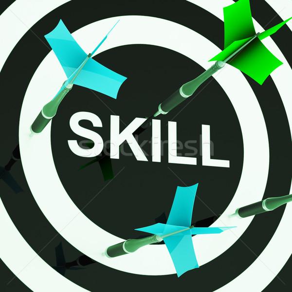 Skill On Dartboard Shows Competencies Stock photo © stuartmiles