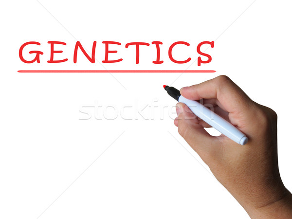 Genetics Word Shows Genetic Makeup And Anatomy Stock photo © stuartmiles