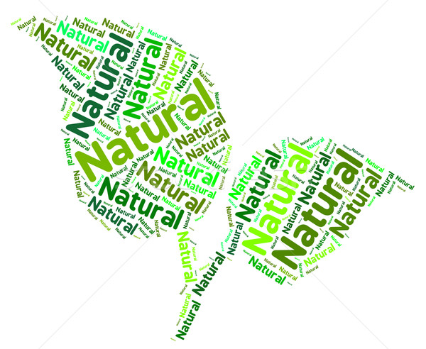 Natural Word Means Bio Rural And Environment Stock photo © stuartmiles
