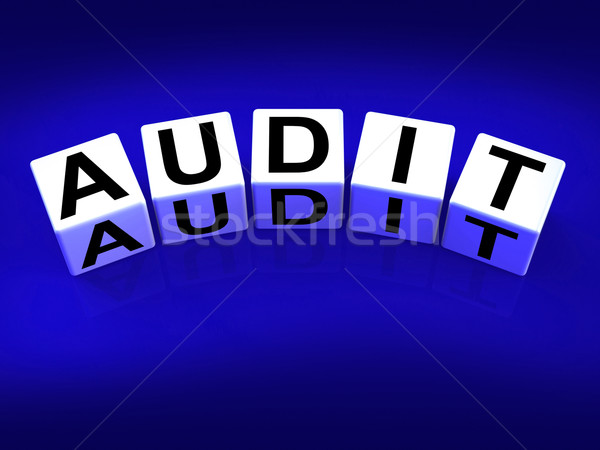 Audit Blocks Refer to Investigation Examination and Scrutiny Stock photo © stuartmiles