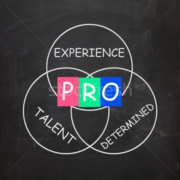 PRO On Blackboard Means Great Experience And Excellence Stock photo © stuartmiles