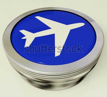 Airplane Icon Or Button Expressing Travel Or Airport Stock photo © stuartmiles