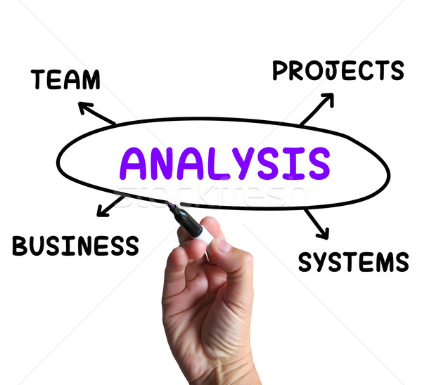 Analysis Diagram Shows Examining Projects And Systems Stock photo © stuartmiles