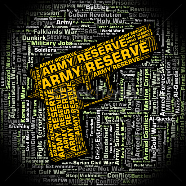 Army Reserve Shows Armed Services And Forces Stock photo © stuartmiles