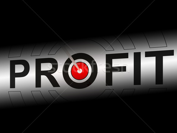 Profit Shows Earning Income And Investment Return Stock photo © stuartmiles