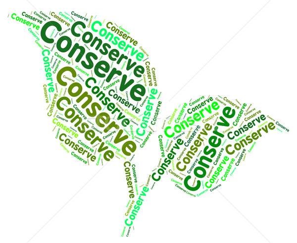 Conserve Word Means Protecting Protect And Sustainable Stock photo © stuartmiles