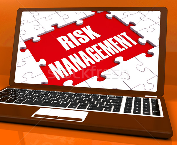 Risk Management On Laptop Showing Risky Analysis Stock photo © stuartmiles