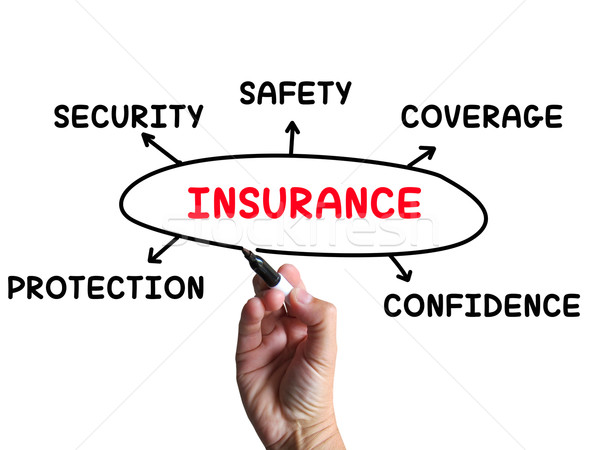 Insurance Diagram Means Coverage Safeguard And Insuring Stock photo © stuartmiles