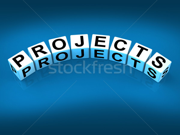 Projects Blocks Represent Ideas activities Tasks and Enterprises Stock photo © stuartmiles