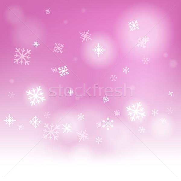 雪 季節の 冷たい 霜 ストックフォト © stuartmiles