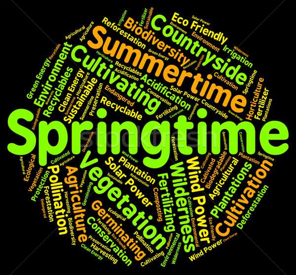 Wiosna słowo słowa sezon pory roku Zdjęcia stock © stuartmiles