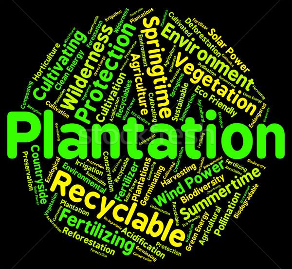 ültetvény szó farmok gazdálkodás farm szavak Stock fotó © stuartmiles