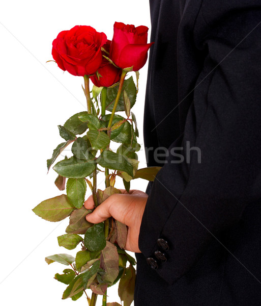 Giving Roses For Valentines Stock photo © stuartmiles