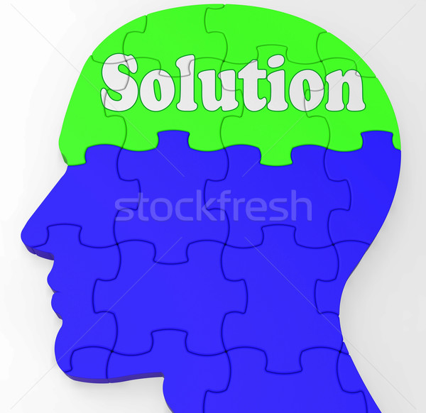 Solution Brain Profile Shows Result Of Problem Stock photo © stuartmiles