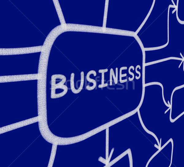 Negocios diagrama empresarial organización empresa Foto stock © stuartmiles