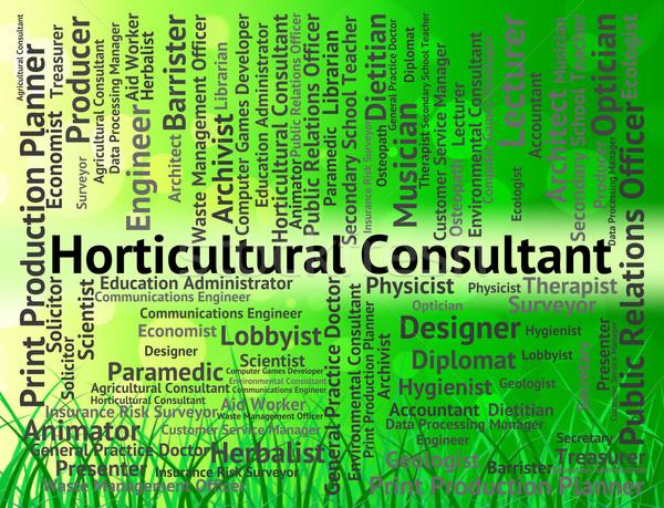 Konsultant kariery zatrudnienie pracy rolniczy Zdjęcia stock © stuartmiles