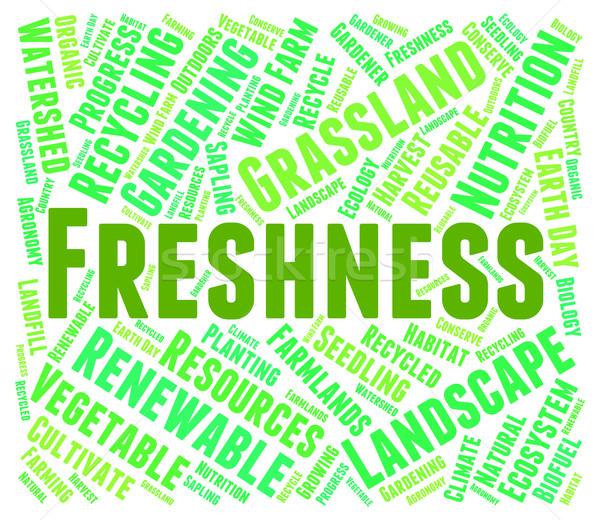 Freshness Word Represents Freshen Freshly And Natural Stock photo © stuartmiles
