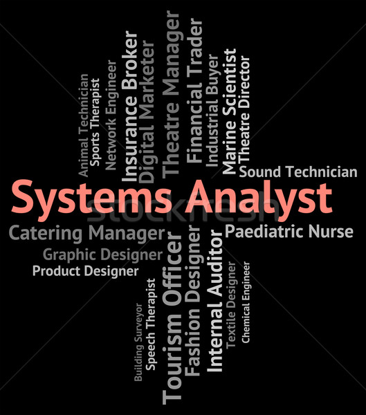 Systems Analyst Shows Analysers Analyser And Jobs Stock photo © stuartmiles