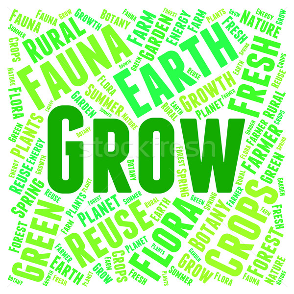 Words Grow Represents Cultivate Cultivation And Cultivates Stock photo © stuartmiles
