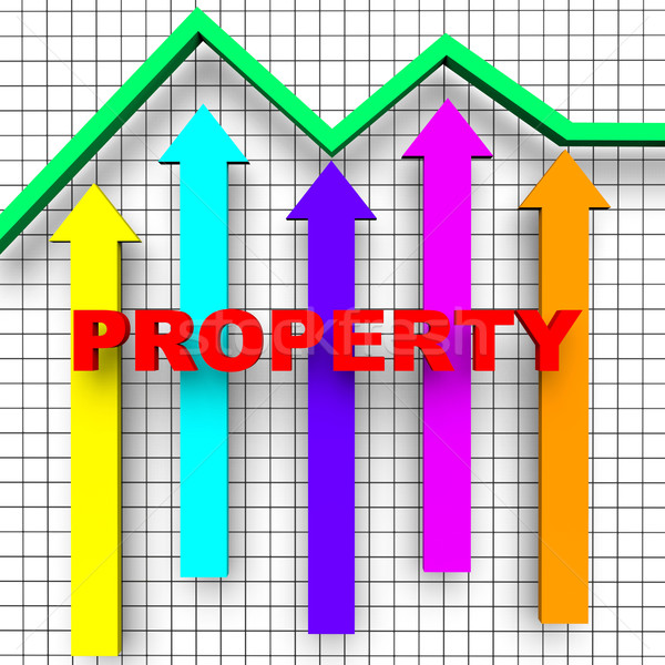 Property Report Indicates Business Graph And House Stock photo © stuartmiles
