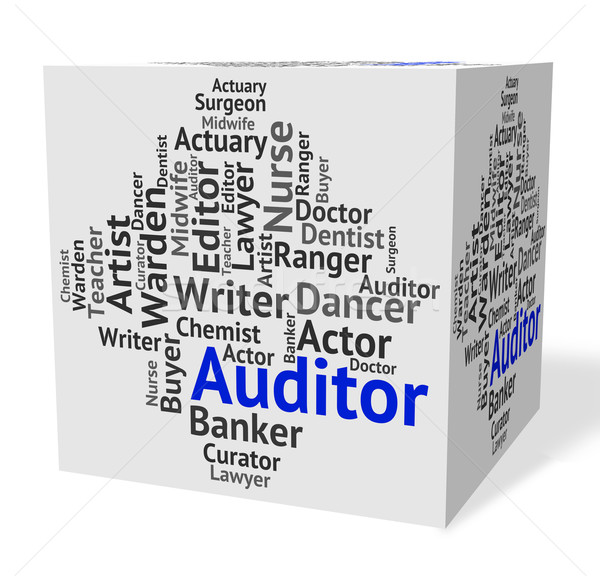 Auditor Job Represents Text Auditors And Inspectors Stock photo © stuartmiles