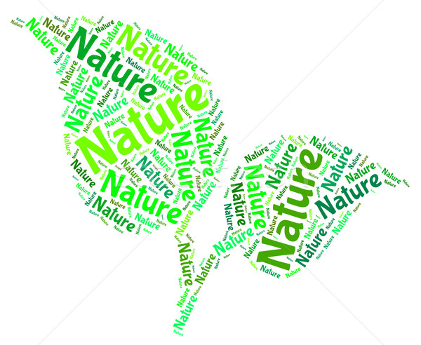 Nature Word Means Environment Environmental And Tree Stock photo © stuartmiles