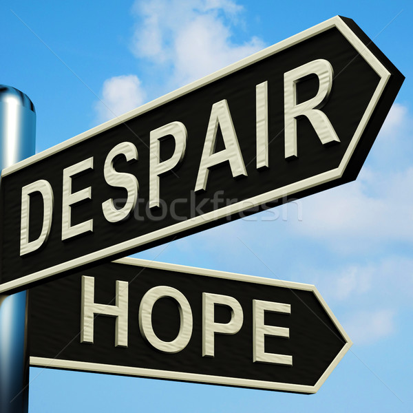 Despair Or Hope Directions On A Signpost Stock photo © stuartmiles