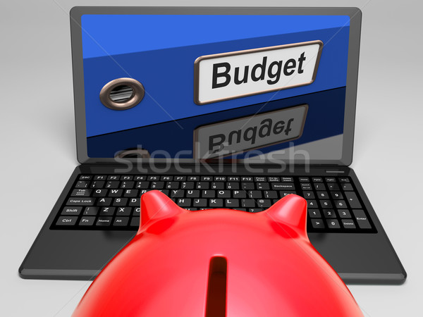 Budget File On Laptop Shows Financial Control Stock photo © stuartmiles