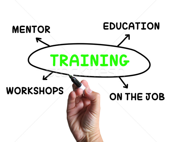 Training Diagram Shows Mentorship Education And Job Preparation Stock photo © stuartmiles