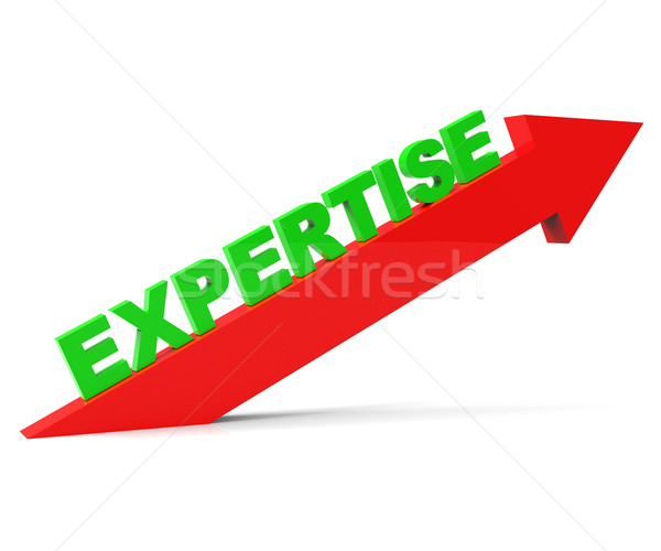 Increase Expertise Indicates Skills Progress And Advance Stock photo © stuartmiles