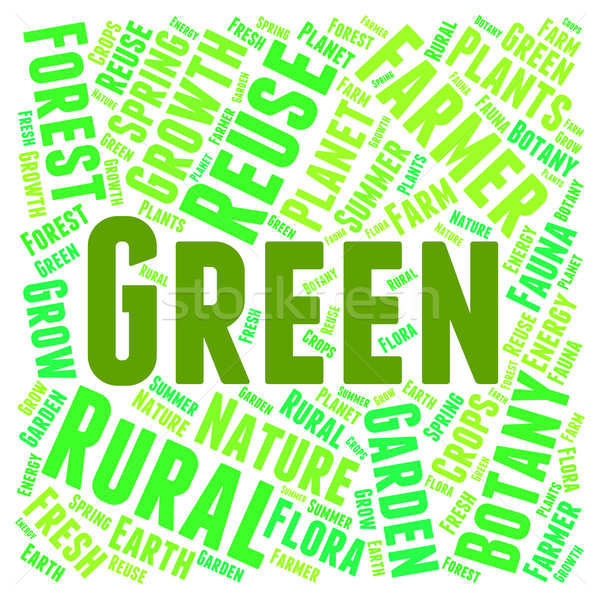 Green Word Means Earth Friendly And Conservation Stock photo © stuartmiles