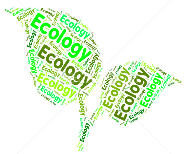 Ecology Word Means Earth Day And Protect Stock photo © stuartmiles