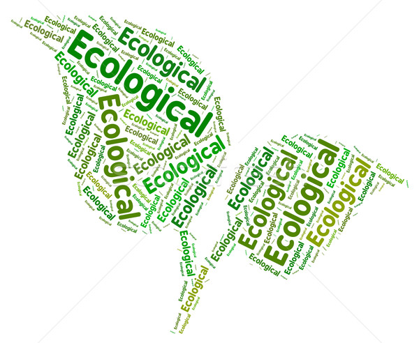 Ecological Word Represents Go Green And Conservation Stock photo © stuartmiles