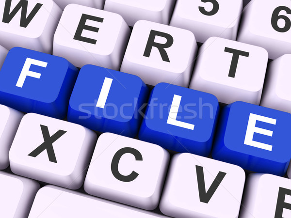 File Keys Show Files Or Data Filing Stock photo © stuartmiles