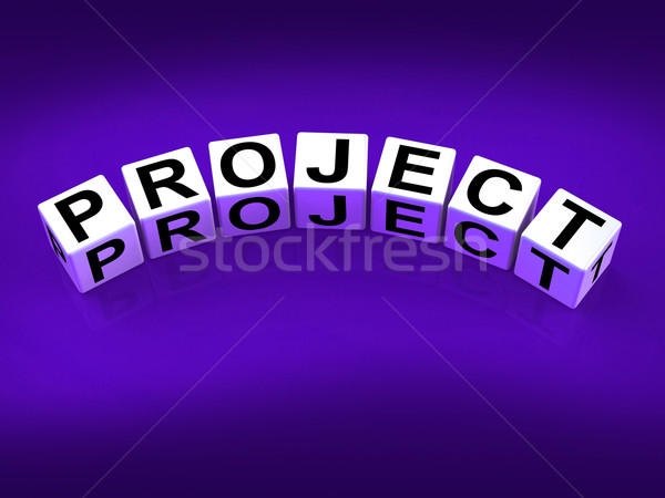 Project Blocks Show Scheme Venture and Task Stock photo © stuartmiles
