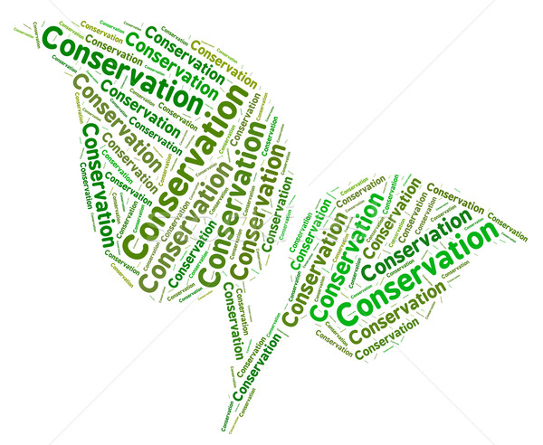 Conservation Word Represents Eco Friendly And Ecology Stock photo © stuartmiles