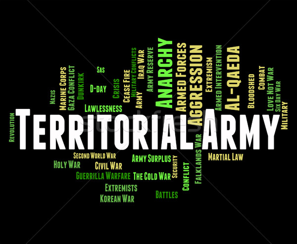 Territorial Army Means Armed Services And Tavr Stock photo © stuartmiles