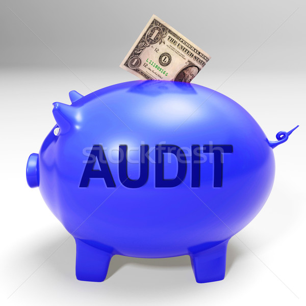 Audit Piggy Bank Means Auditing Inspecting And Finances Stock photo © stuartmiles
