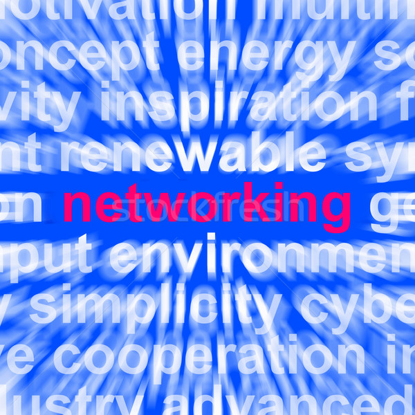 Networking Word Means Making Contacts And Business Networks Stock photo © stuartmiles